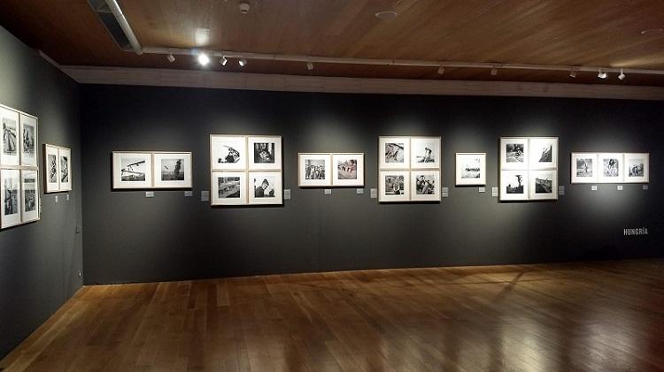 Müller-Miklós-kiállítás